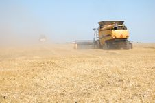 Free Wheat Harvesting Stock Photography - 15523962