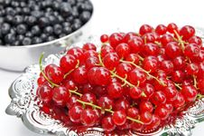 Free Redcurrants On A Silver Platter Stock Photography - 15523992