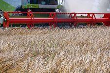 Free Wheat Harvesting Royalty Free Stock Photo - 15524025