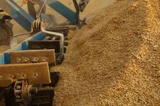 Free Uploading Grain By Bucket Conveyer Stock Images - 15524464