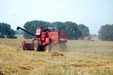 Free Wheat Harvesting Stock Image - 15524531