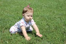 Free Baby Crawling Royalty Free Stock Image - 15528186