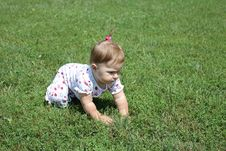 Free Baby Crawling Stock Image - 15528281