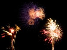 Free Tree Sets Of Fireworks Stock Photo - 15528730