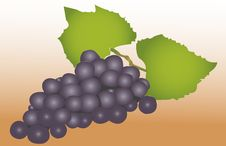 Free Black Grapes Stock Photography - 15529352