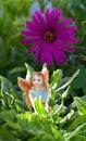 Free Fairy On Vegetation Royalty Free Stock Image - 15537316