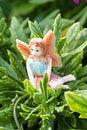 Free Fairy On Vegetation Stock Photo - 15537360