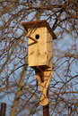 Free Bird House Stock Photography - 15537952