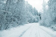 Free Winter Road Royalty Free Stock Image - 15531106