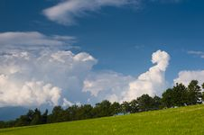 Free Slope Meadow Royalty Free Stock Photo - 15531525