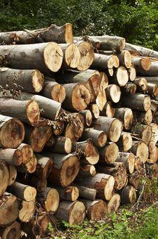 Free Wood Stack Royalty Free Stock Photos - 15532088