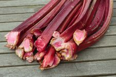 Free Fresh Rhubarb Shoots  Closeup Stock Photos - 15533823