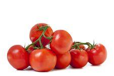 Free Tomatoes Royalty Free Stock Image - 15534886