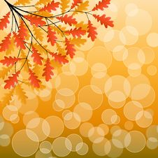 Free Autumn Background Royalty Free Stock Images - 15537259