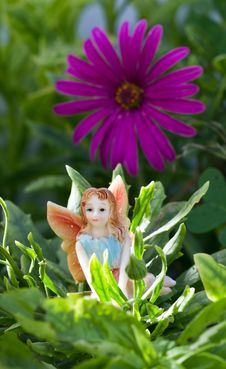 Free Fairy On Vegetation Royalty Free Stock Image - 15537316