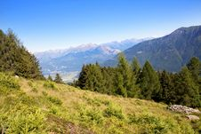 Free Trees In The Mountains Royalty Free Stock Image - 15539036