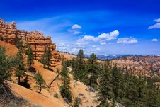 Free Bryce Canyon Rim Trail Royalty Free Stock Photos - 15539608