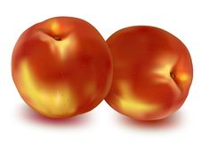 Free Two Ripe Peaches. Stock Image - 15539661
