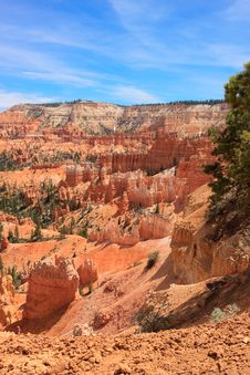 Free Bryce Canyon Rim Trail Royalty Free Stock Photo - 15539665