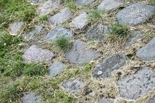 Free Ground Green With Stones Royalty Free Stock Images - 15539859