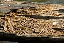 Free Broken Wood Stock Photos - 15539863