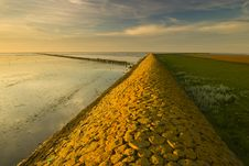 Free A Warm Yellow Dike At The Waddensea Royalty Free Stock Photos - 15539888
