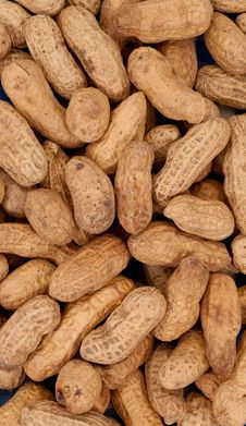 Free Roasted Peanut Background Royalty Free Stock Photography - 15540017