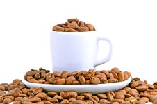 White Cup Filled With Coffee Beans Royalty Free Stock Photo