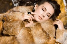 Free Woman In A Fur Coat Royalty Free Stock Image - 15542046