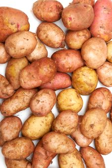 Free Potatoes Stock Images - 15545174