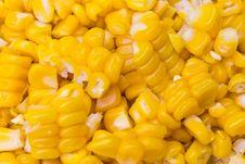 Free Corn Royalty Free Stock Photo - 15548735