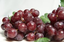 Grape Close Up Royalty Free Stock Image