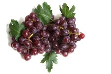 Free Grape Close Up Stock Photography - 15549602