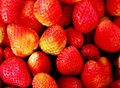 Free Strawberries Stock Images - 15551044