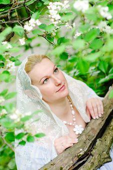 Free Beautiful Bride Closeup Stock Photos - 15550043