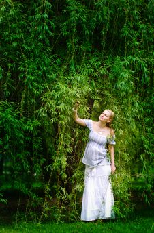 Free Pregnant Woman In Willow Garden Royalty Free Stock Photos - 15550288