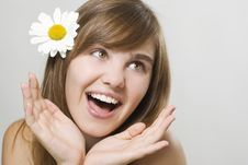 Free Woman With Camomile Royalty Free Stock Images - 15550429