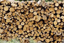 Free Wood Stock Images - 15555144