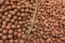 Free Nuts Royalty Free Stock Image - 15555246