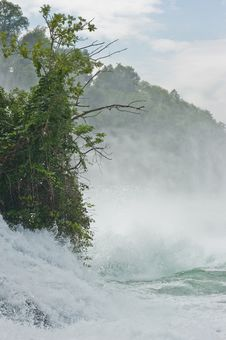 Rhine Falls Stock Image