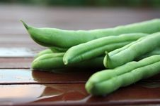 Free French Green Beans 2 Stock Photos - 15555963