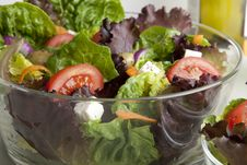 Free Salad In Glass Bowl Royalty Free Stock Photography - 15556337