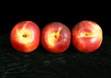 Three Large Ripe Nectarine Royalty Free Stock Photography