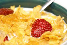 Free Healthy Breakfast Stock Image - 15556721
