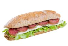 Free Sandwich Stock Photography - 15559582