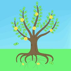 Free Money Tree Stock Photo - 15559650