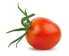 Free Tomato Stock Photography - 15559732