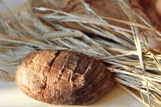 Free Bread And Ears Stock Photo - 15561470