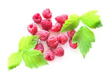 Free Raspberry And Leaves Royalty Free Stock Photography - 15561567