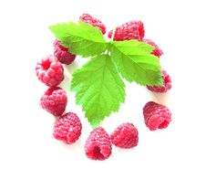Free Raspberry And Leave Royalty Free Stock Photography - 15561707